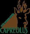 POU Capreolus
